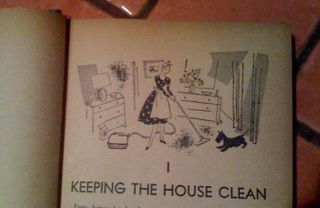 Housewifecleaning